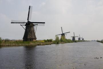 Kinderdijk in the Summer