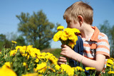 Boy and bunch of dandelions.