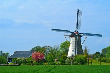 Dutch windmill in Colijnsplaat, Zeeland