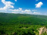 Fruska Gora National Park -Serbia poster