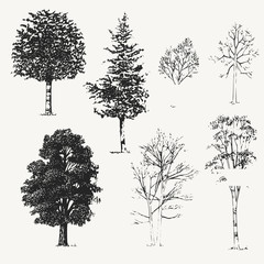 vector trees....