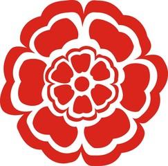 English Rose Red