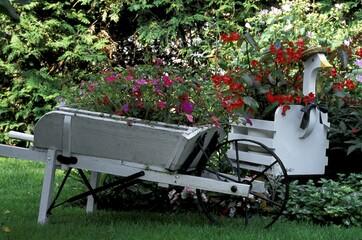 Pretty garden and planters