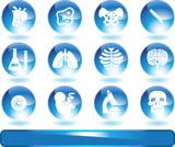 Biology Buttons poster