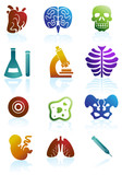 Color Biology Buttons poster