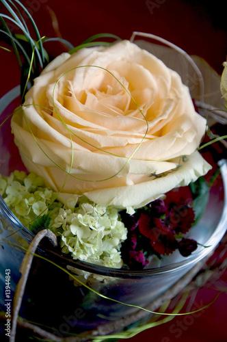 rose im glas von melanie kohlhaas lizenzfreies foto 13944843 auf. Black Bedroom Furniture Sets. Home Design Ideas