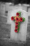Poppy wreath on a gravestone poster