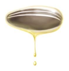 olio di girasole 2