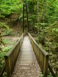 Petit pont en bois