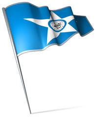 Flag pin - Houston