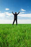 glad businessman standing at the green grass poster