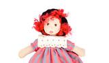 Beautiful rag doll poster