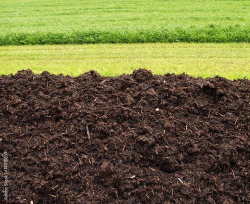 céréaliculture bio - 14018039
