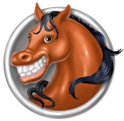 cavallo snile