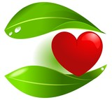 Vegetal food protecting heart
