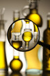 Varieta di olio d oliva