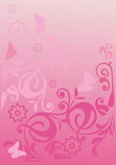 pink curled background with butterflies