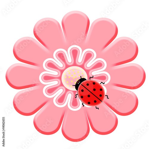Tuinposter Lieveheersbeestjes Ladybug on the pink flower