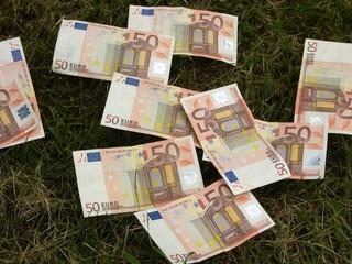 billets de banque dans l'herbe