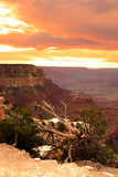 Grand Canyon National Park, USA..