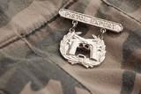 Pistol Expert War Medal poster