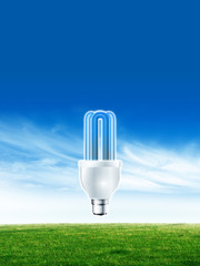 Energy saving Eco light bulb
