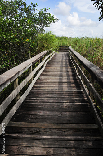 path on everglades