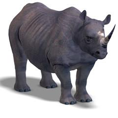 Rhinoceros Rendering