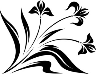 Original Vector Floral Ornament