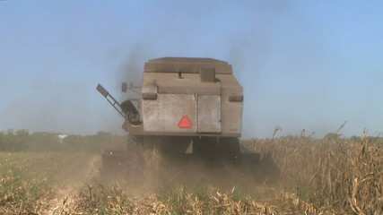 Combine Harvesting Corn 04
