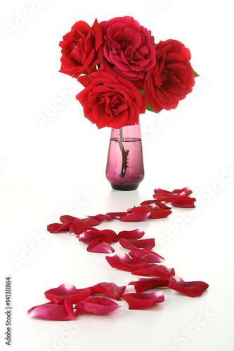 P tales de rose et bouquet de roses by royalty free stock photos 14138864 on - Petales de roses sechees ...
