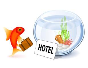 Goldfish Hotel