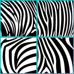 4 verschiedene Zebramuster