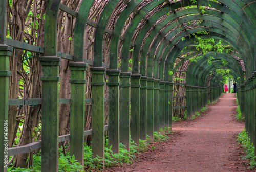 Pergola. Wooden arches and footpath escaping afar. 14161816