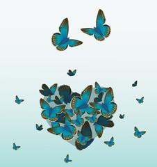 schmetterlingsherz blau