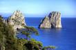 Leinwanddruck Bild - Capri, i Faraglioni
