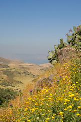 Golan heights and view over the Sea of Galillee