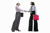 Two businesswomen shaking hands, cut out