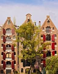 historical dutch houses