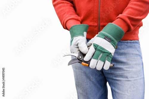 Man wearing gardening gloves, using secateurs, mid-section, cut out