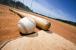 Baseball and Bat on Home Plate - 14205892