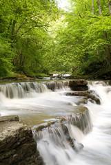 Fluss im Wald (Schlichemklamm) | hochformat