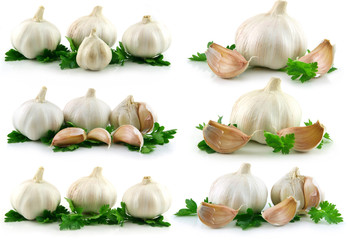 Collectiion of Garlic Vegetable with Green Parsley