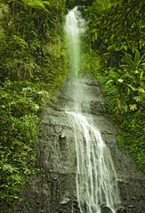 waterfall in the safari in uganda