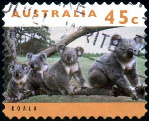 Australia. Koala. Timbre postal oblitéré.