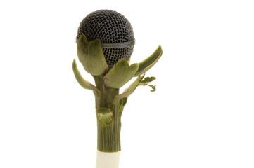 micro alcachofa