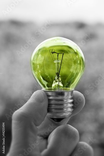 holding light bulb