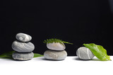 Stack stones on black with green leaf