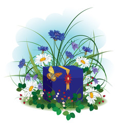 gift box, butterfly and wild flowers