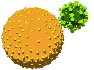 aidsvirus infiziert menschliche zelle